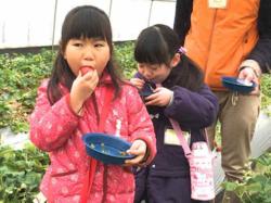 イチゴぱくっ_400.png