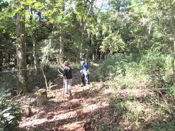 里山の森に秘密基地- - 1_640.jpg