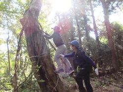 里山の森に秘密基地- - 4_640.jpg