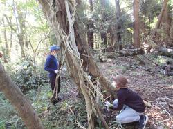 里山の森に秘密基地- - 5_640.jpg