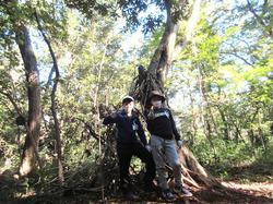 里山の森に秘密基地- - 8_640.jpg